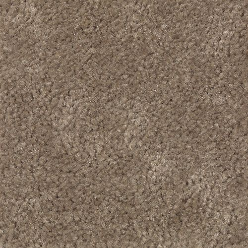 Carpet Savory 1S81-824 ChocolateMalt