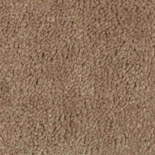 Carpet Savory Sweet Chestnut 867 main image