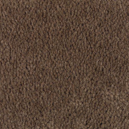 Carpet Savory Pumpernickel 884 main image