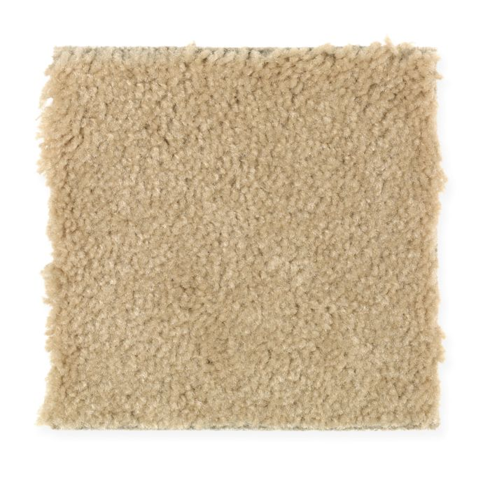 <div><b>Fiber Brand</b>: SmartStrand <br /><b>Style</b>: Texture and Shag <br /><b>Fiber Type</b>: Triexta <br /><b>Application</b>: Residential <br /></div>