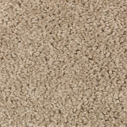 Carpet Splurge 1T29-846 DriedHerb