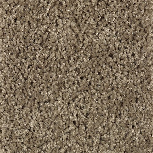Carpet Splurge 1T29-866 WinterGarden
