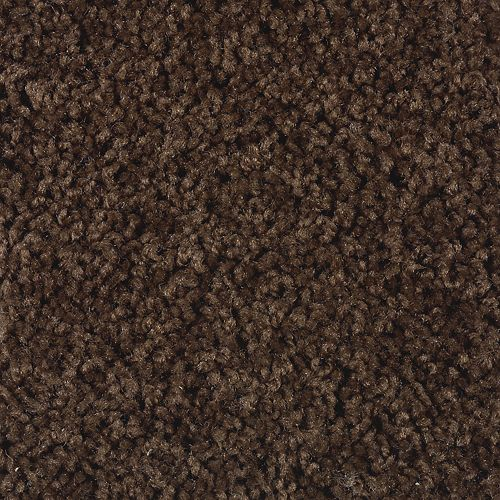 Carpet Splurge 1T29-878 Chocolate