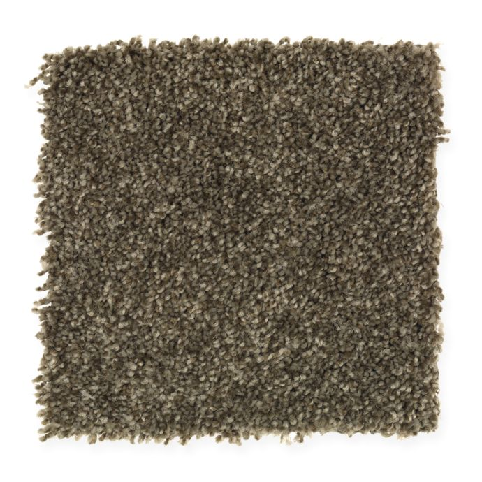 Carpet AheadoftheCurve 1U45-101 PineNeedle