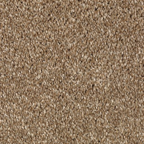 Carpet AheadoftheCurve 1U45-113 BrushedSuede