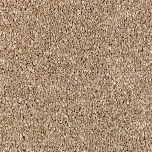 Carpet AheadoftheCurve 1U45-108 Embraceable