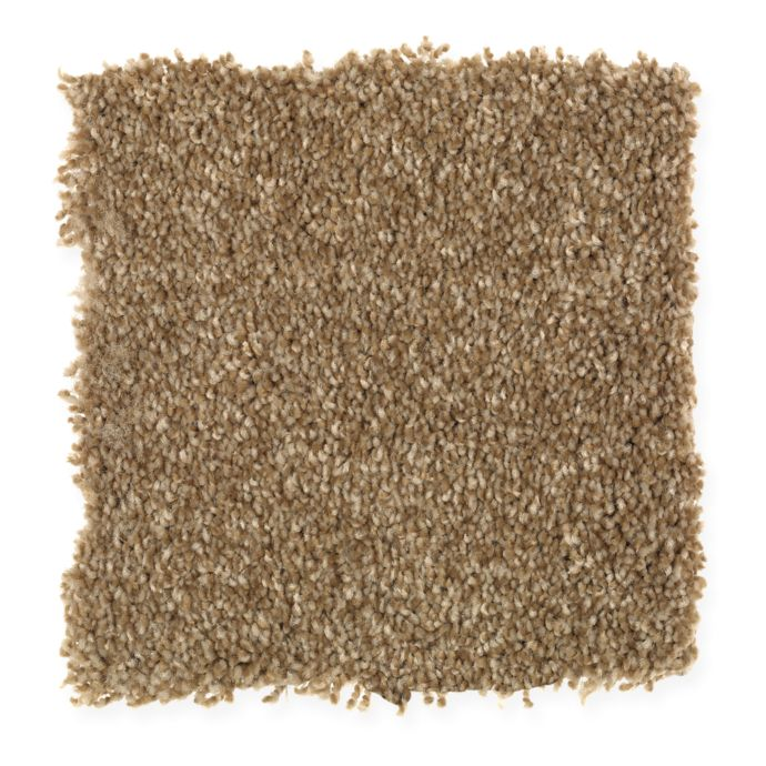 Carpet AheadoftheCurve 1U45-116 Brunette