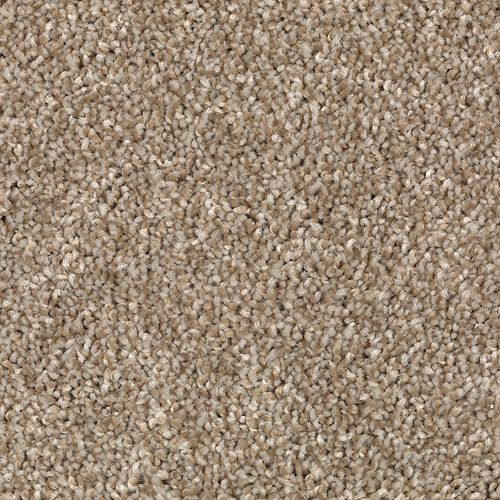 Carpet AheadoftheCurve 1U45-109 GentleTaupe
