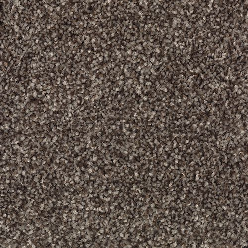 Carpet AheadoftheCurve 1U45-115 Dreamland