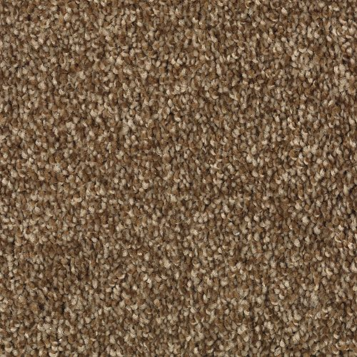 Carpet AheadoftheCurve 1U45-117 WarmEarth