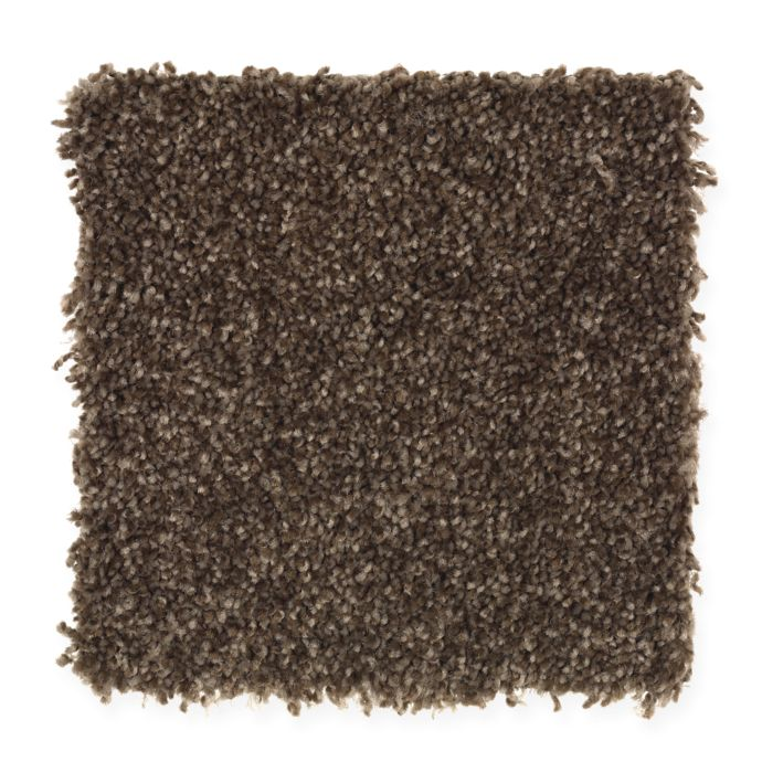 Carpet AheadoftheCurve 1U45-119 RichLeather