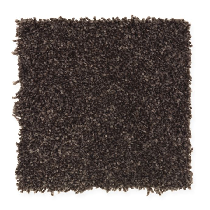 Carpet AheadoftheCurve 1U45-120 DriedPeat