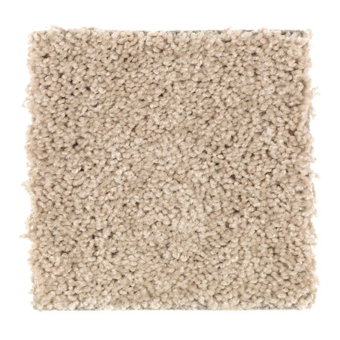 Carpet Celebrate 1U13-846 DriedHerb