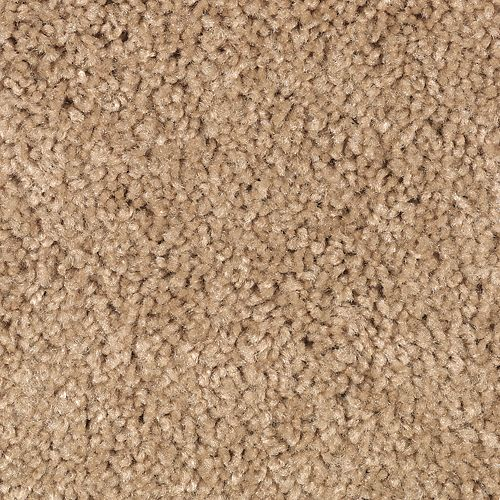 Carpet Celebrate 1U13-853 LightAmber