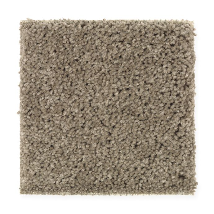 Carpet Celebrate 1U13-859 WeatheredTaupe