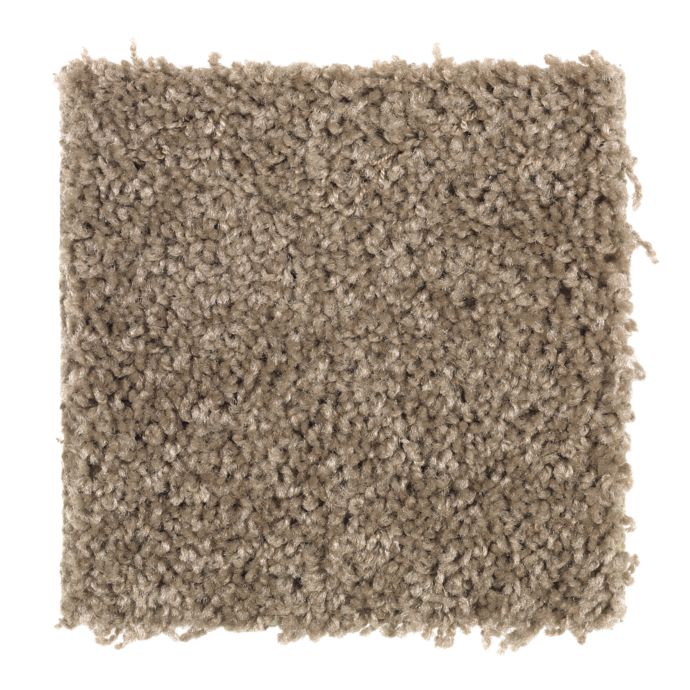 Carpet Celebrate 1U13-863 AntiqueEarth