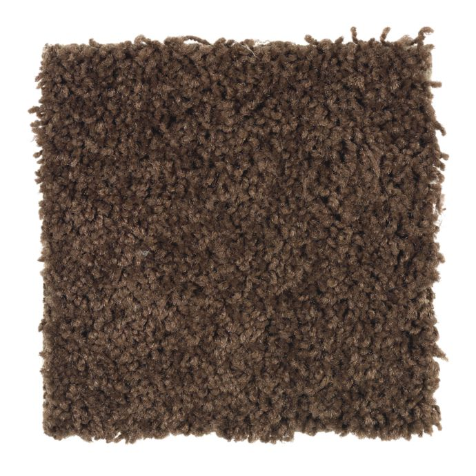 Carpet Celebrate 1U13-878 Chocolate
