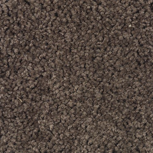 Carpet Celebrate 1U13-889 Walnut
