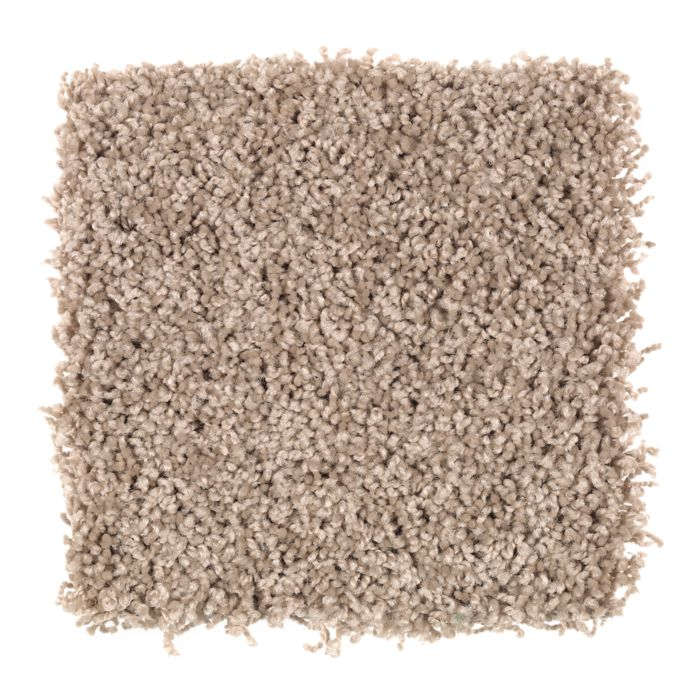 Carpet BillowingSky 1U26-127 RumRaisin