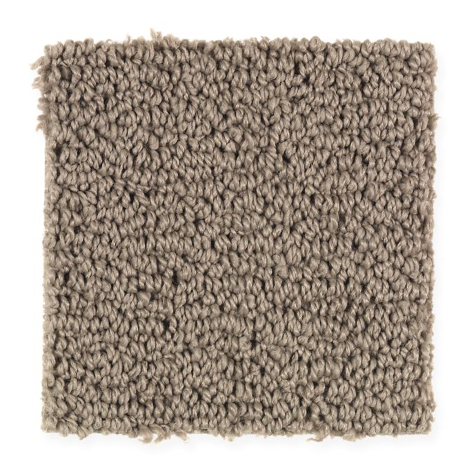 Carpet AdvancedElements 1U35-546 DryTwig