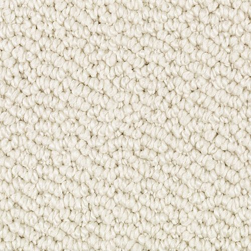 Carpet Classical Movement Soft Soprano 711 main image