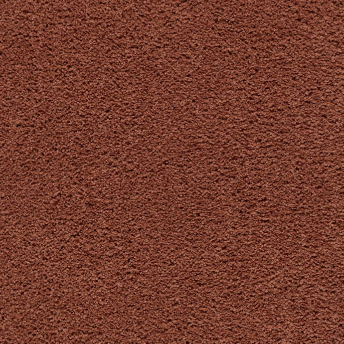 Carpet AwaitedBliss 1V17-502 WarmAutumn
