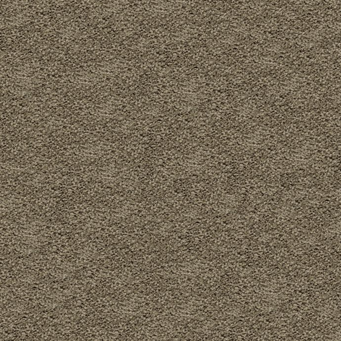 Carpet AwaitedBliss 1V17-520 HerbGarden