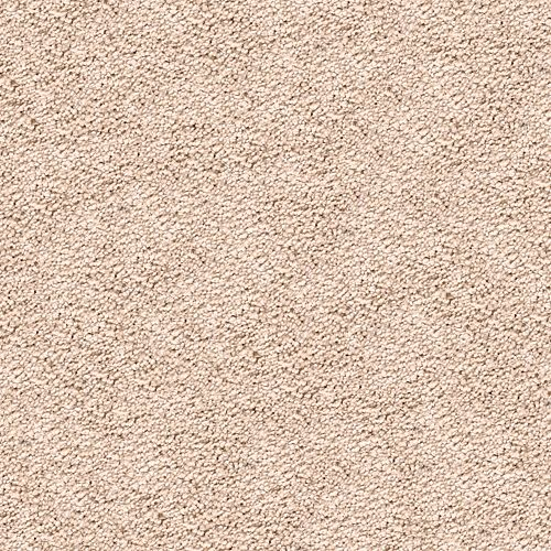 Carpet Awaited Bliss Amish Linen 532 main image