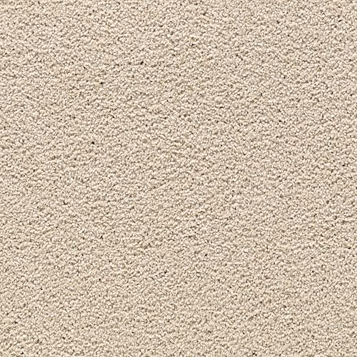 Carpet AwaitedBliss 1V17-540 PersianSilk
