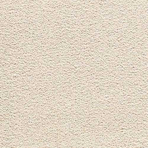 Carpet AwaitedBliss 1V17-534 QuietNeutral