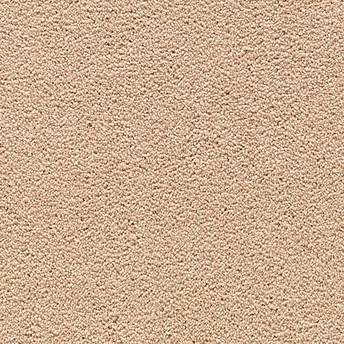 Carpet AwaitedBliss 1V17-523 Homespun