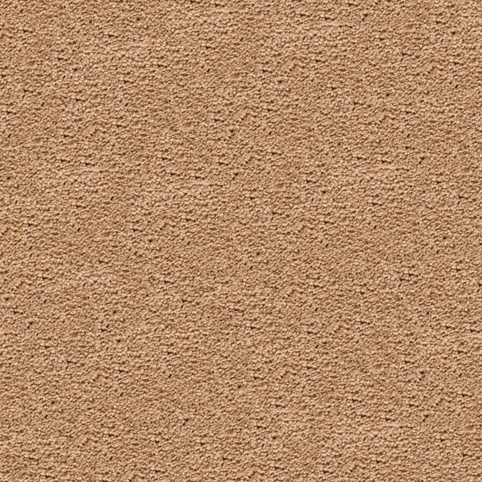 Carpet Awaited Bliss Golden Buff 513 main image