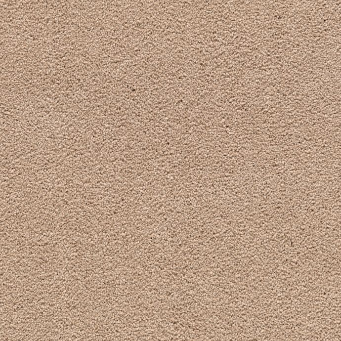 Carpet AwaitedBliss 1V17-524 HarvestStraw
