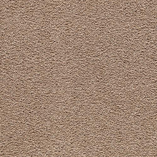 Carpet AwaitedBliss 1V17-514 Wildwood