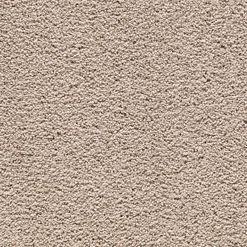 Carpet AwaitedBliss 1V17-526 SequoyahDusk