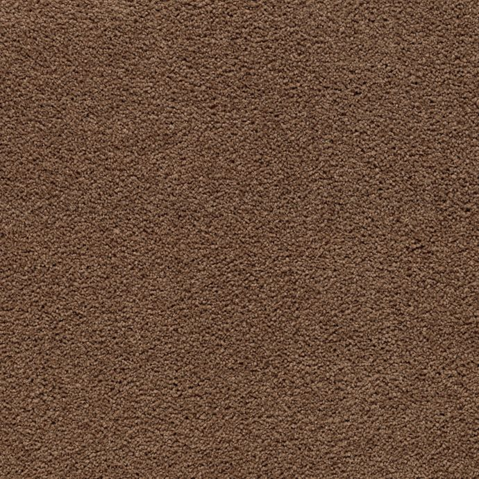 Carpet Awaited Bliss Lush Suede 504 main image