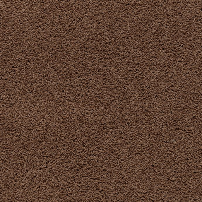 Carpet AwaitedBliss 1V17-505 BurnishedBrown
