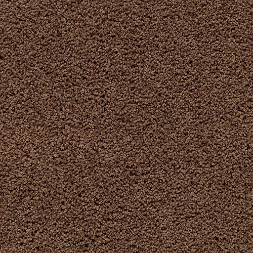 Carpet Gentle Essence Burnished Brown 505 main image