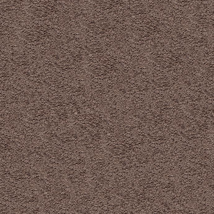 Carpet AwaitedBliss 1V17-506 SoftMink
