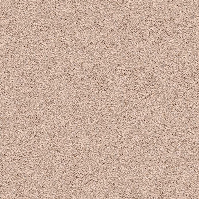 Carpet DelicateCharm 1V24-531 DesertStar