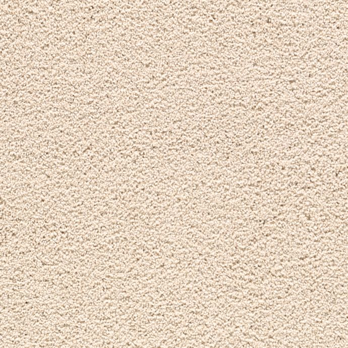 Carpet Delicate Charm Quiet Neutral 534 main image