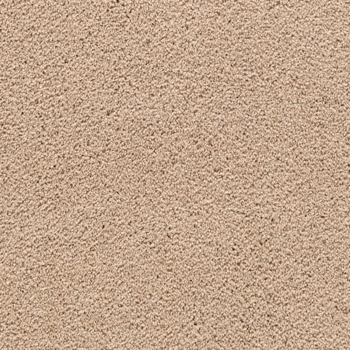 Carpet DelicateCharm 1V24-524 HarvestStraw