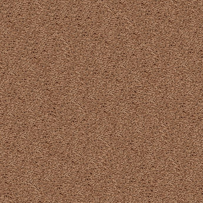 Carpet DelicateCharm 1V24-503 NatureTrail