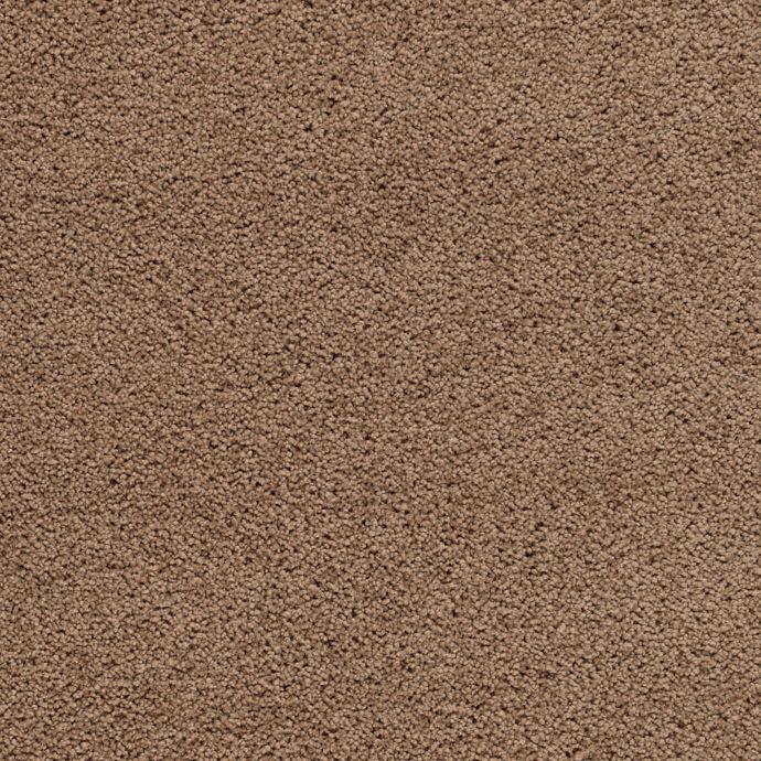 Carpet DelicateCharm 1V24-504 LushSuede