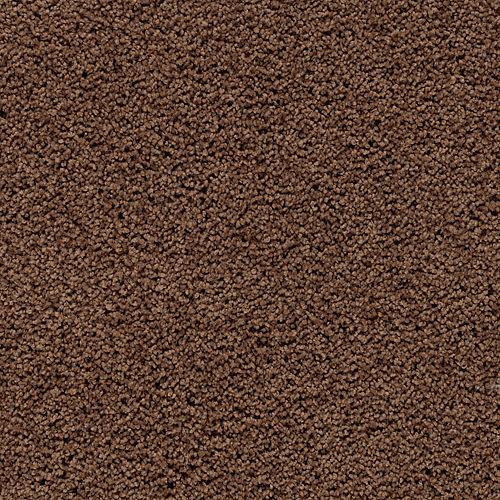 Carpet InspiredByNature 1V26-505 BurnishedBrown