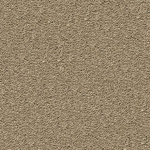 Carpet CozyComfort 1V18-530 NewSpring