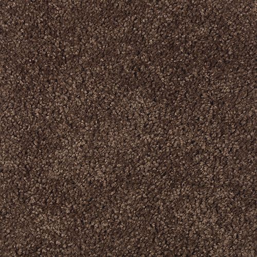 Carpet SoothingEffect 1W19-505 BurnishedBrown