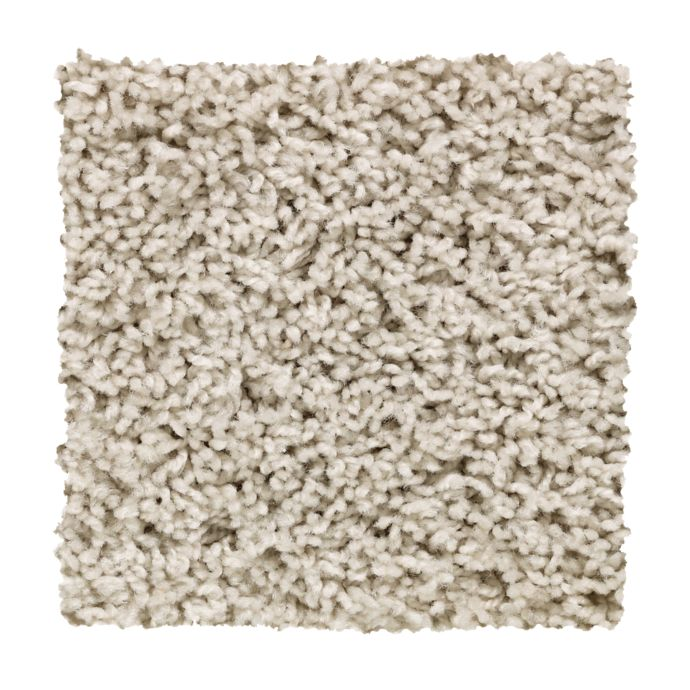Carpet Alliance 2X03-724 WinterWind