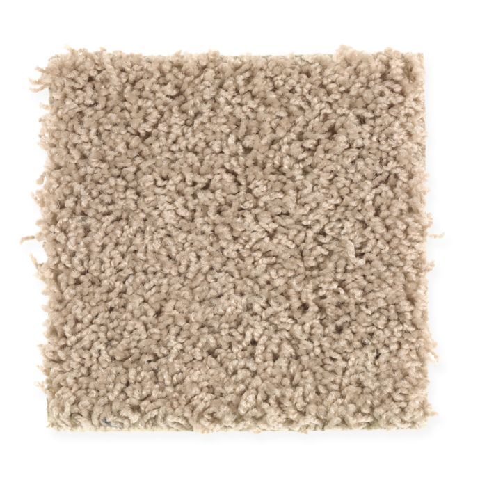 Carpet Alliance 2X03-751 Homemade