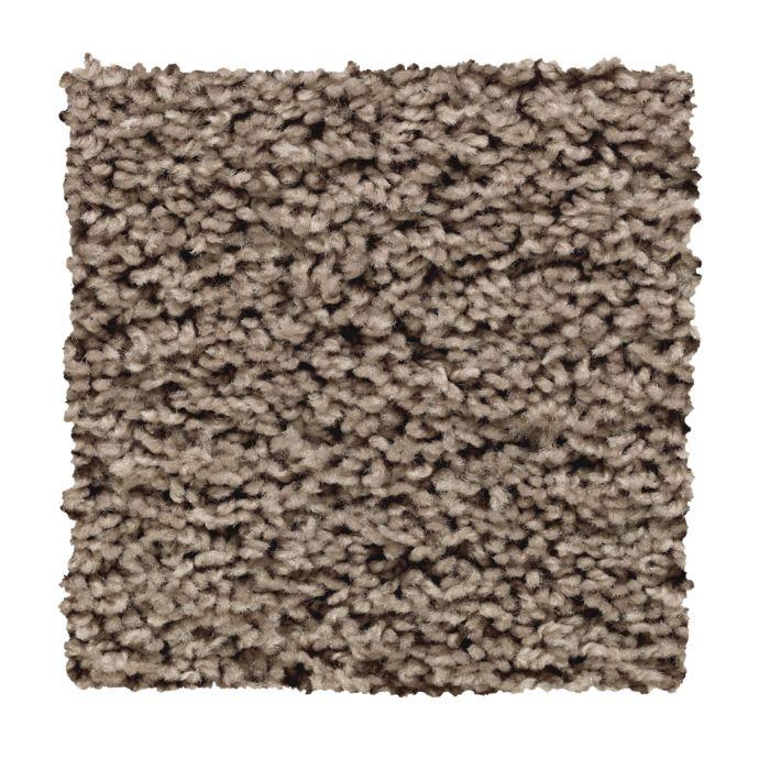 Carpet Alliance 2X03-789 PorchSwing